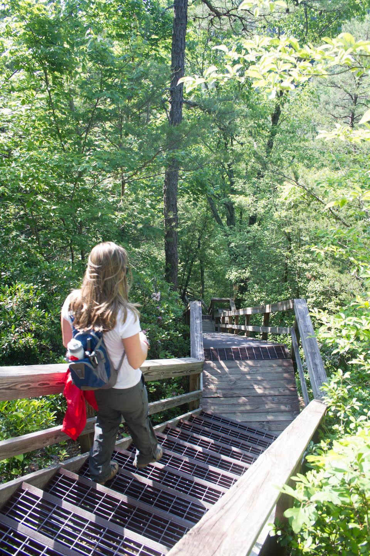 RV Adventure Part 3 – Tallulah Gorge
