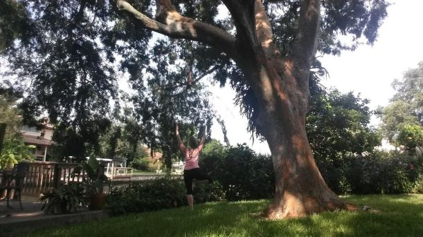 by a tree, doing tree